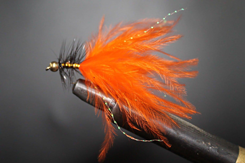 Orange Dancer Black Body