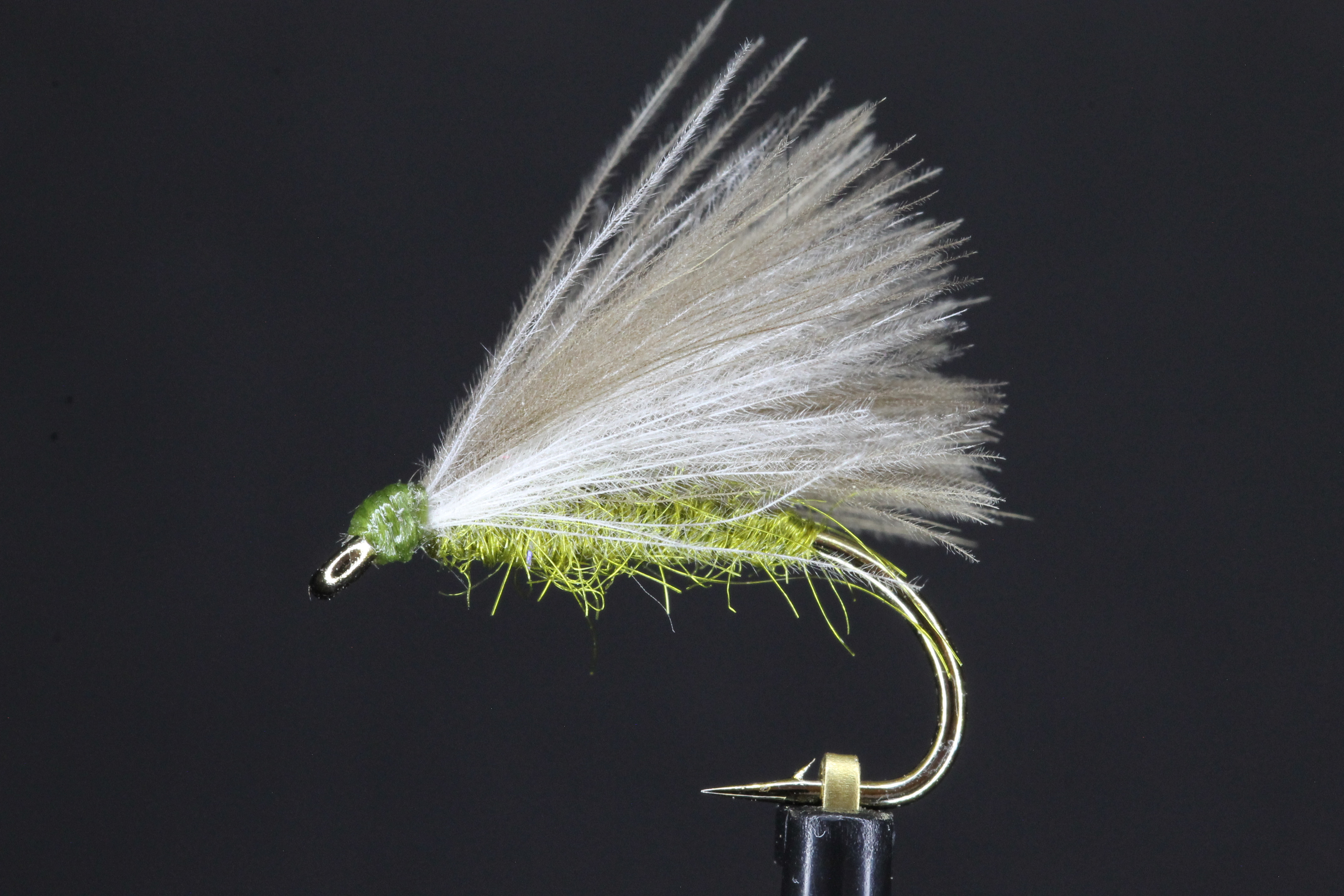 Olive CDC F Fly