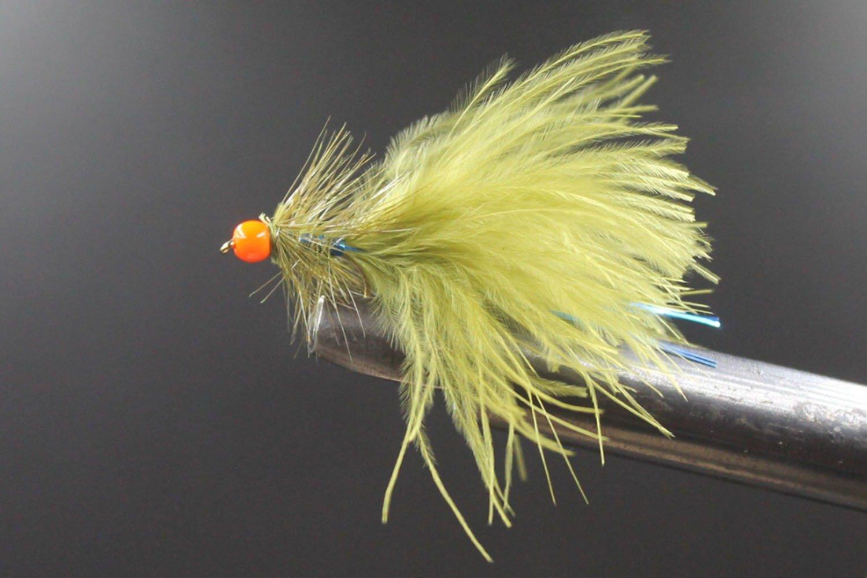 Hothead Damsel Orange