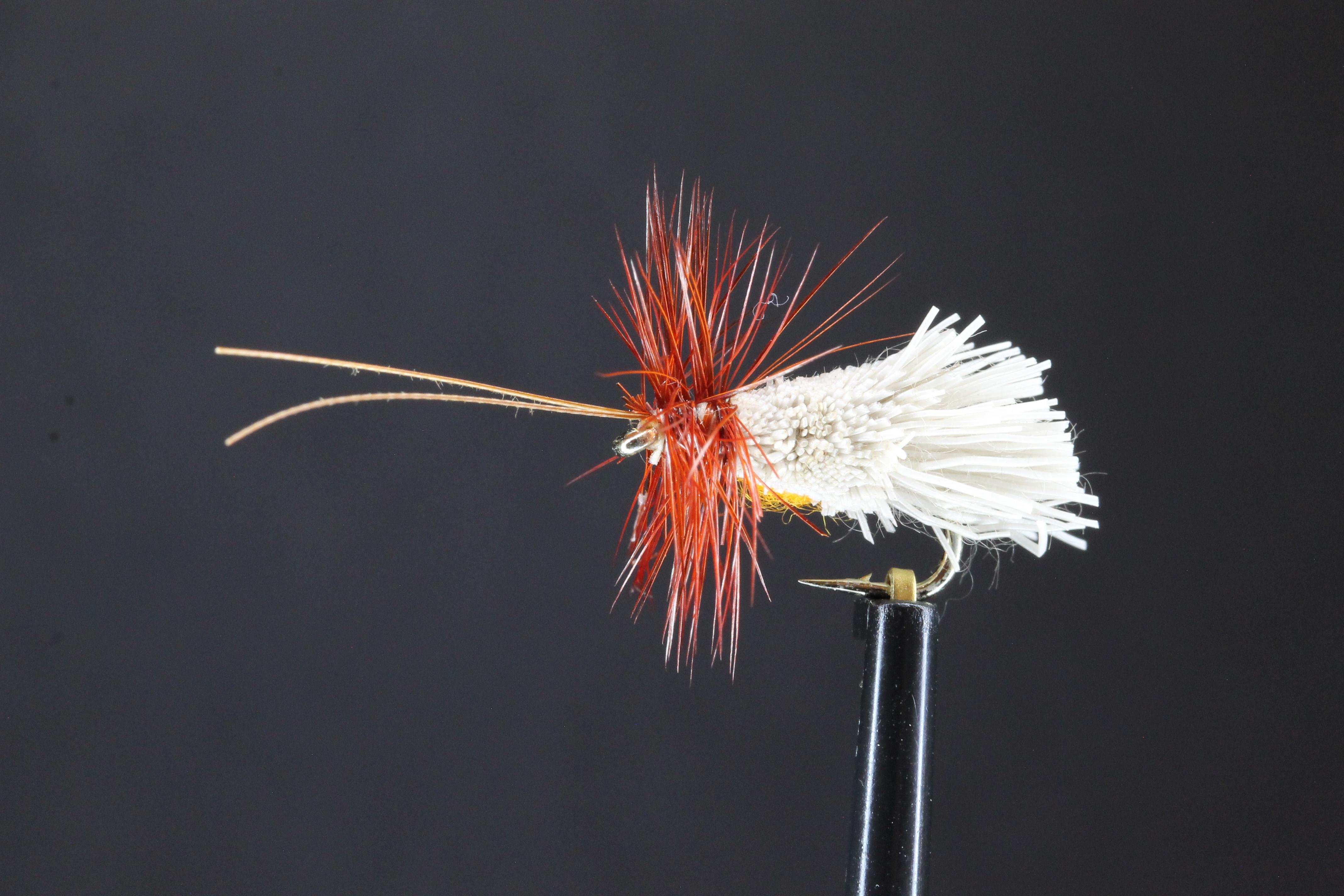 G & H  Sedge (Orange)