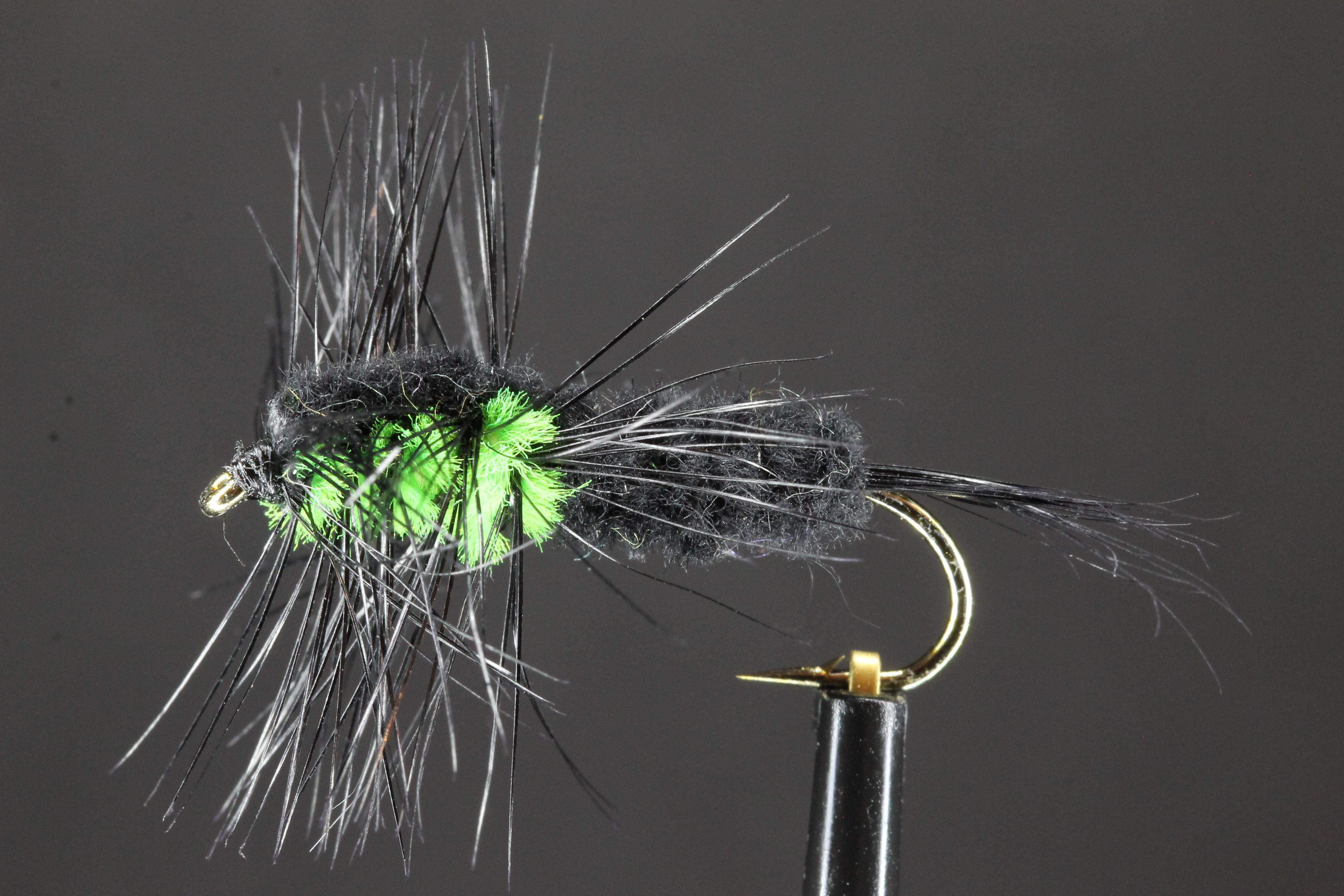 Long shank Green Montana