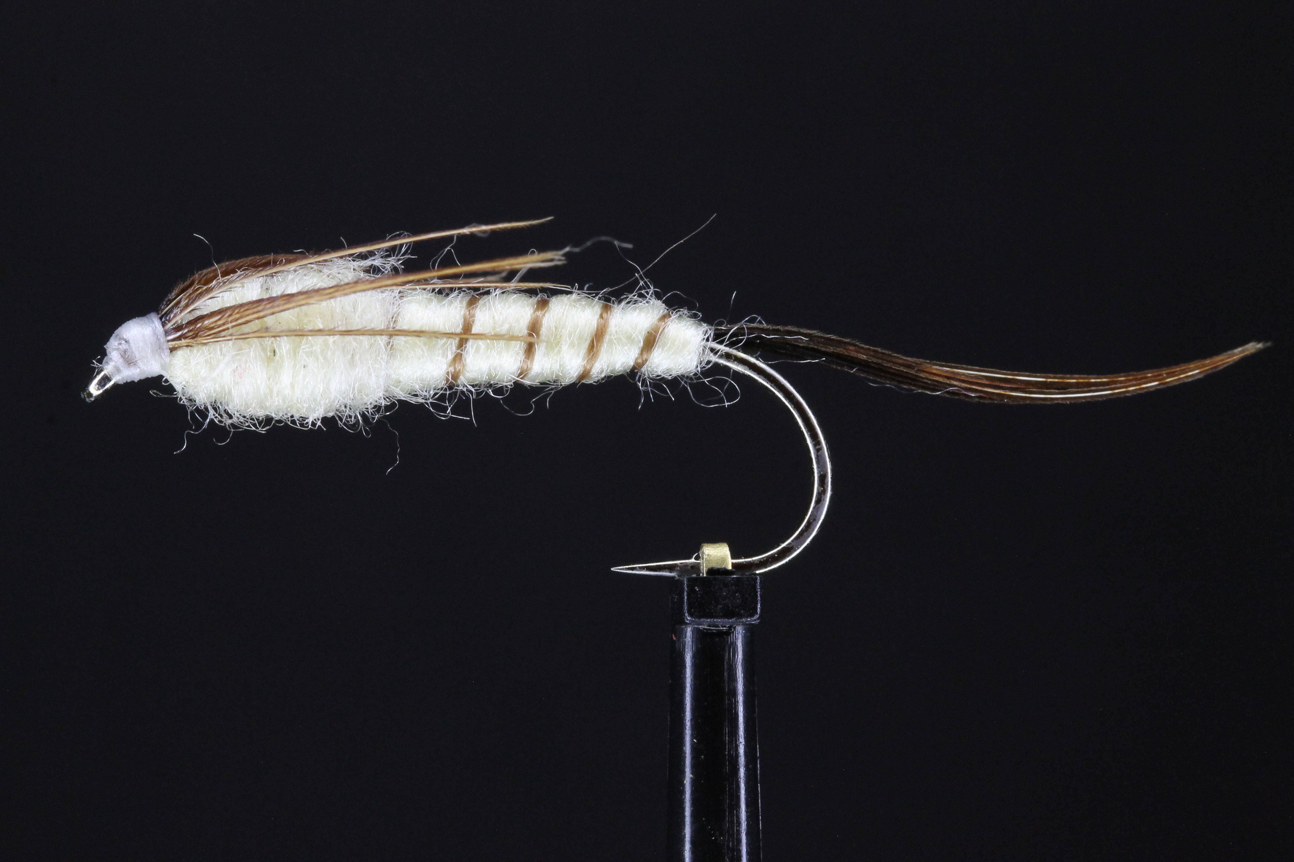 Long shank Mayfly Nymph