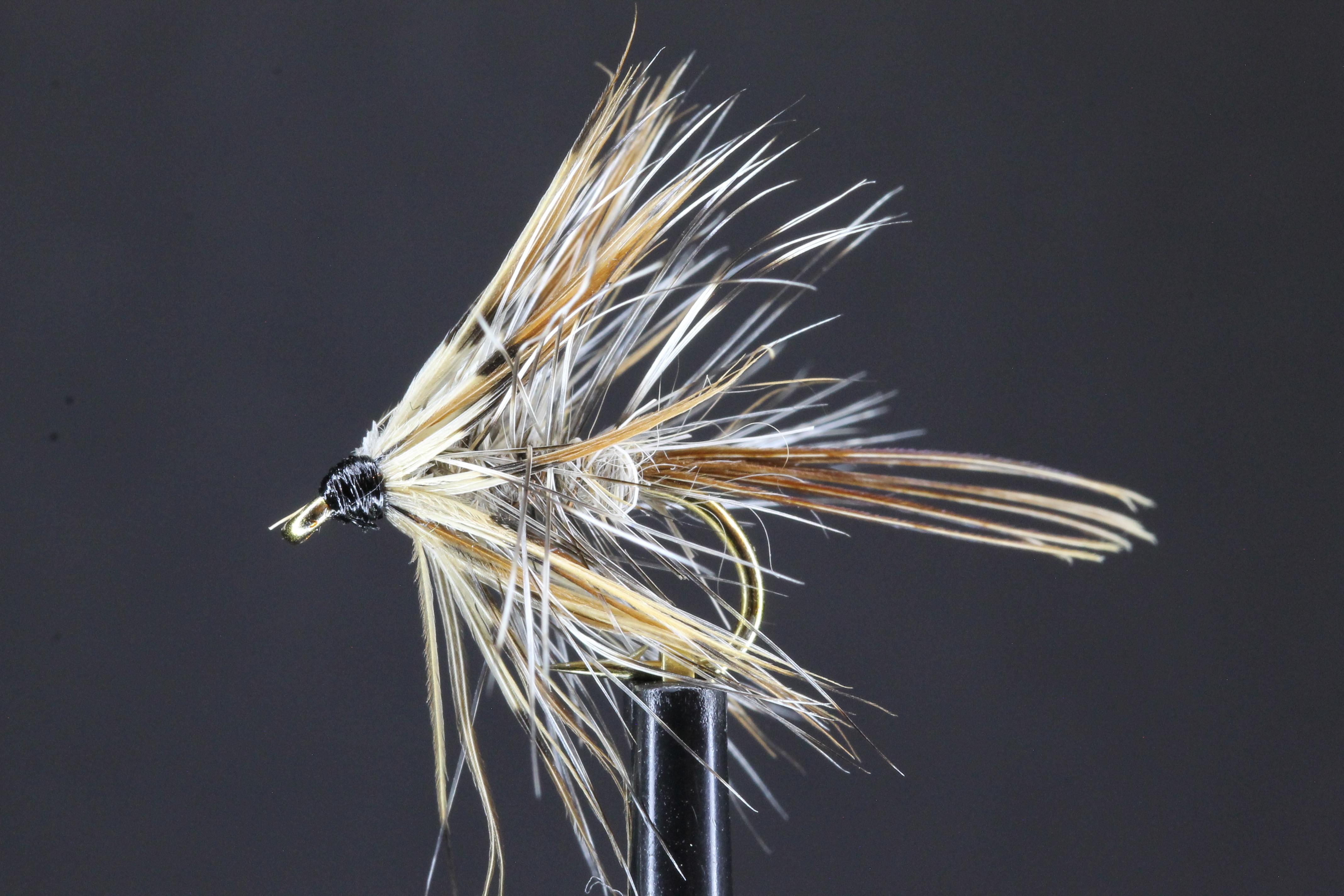 French Partridge Mayfly