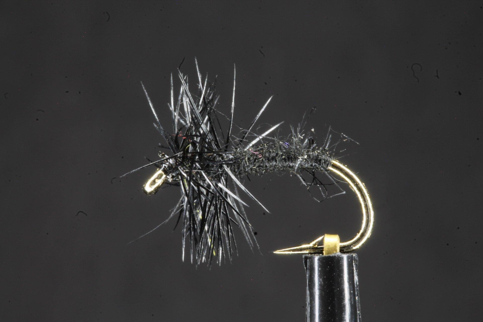 Black Spider Dry