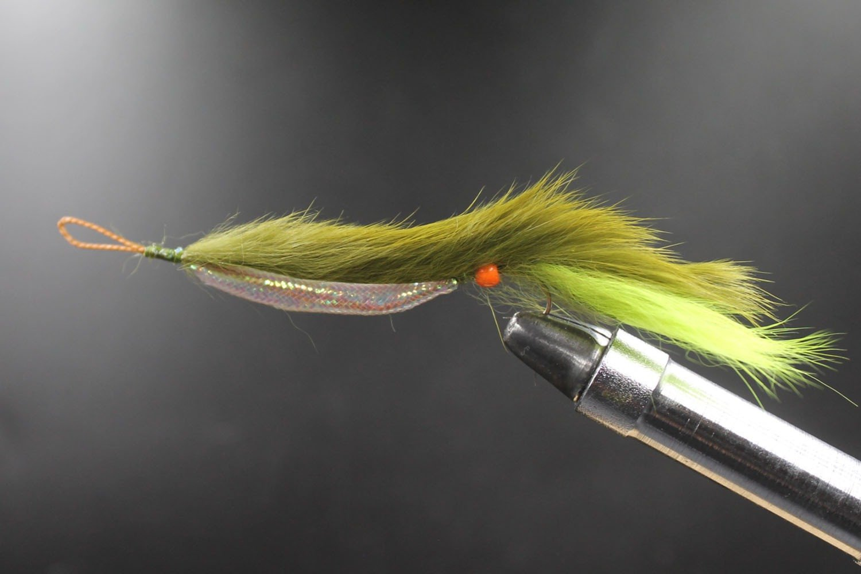 Olive Weed Fly (Snake)