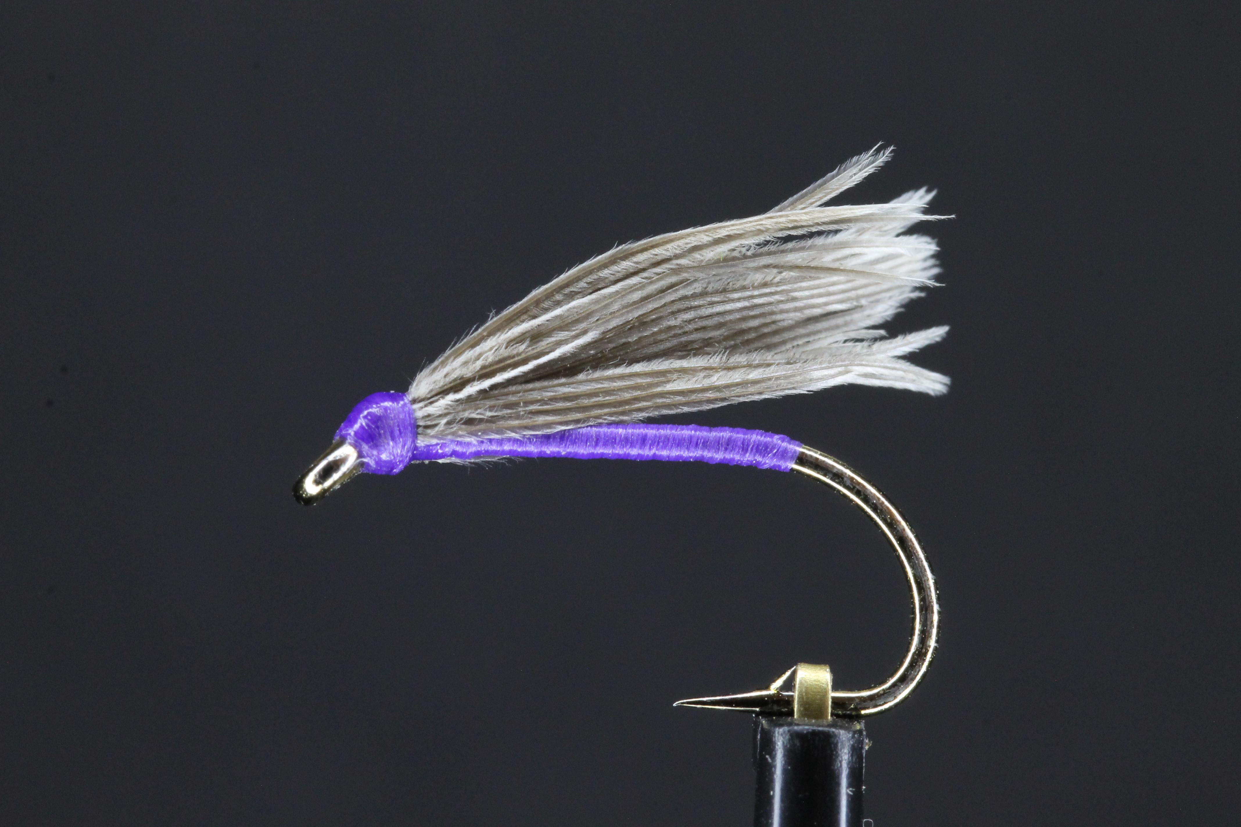 Snipe and Purple